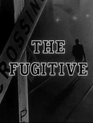 The Fugitive Tv Series 2000 Synopsis