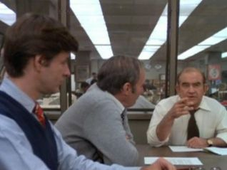Lou Grant: Spies