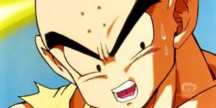 DragonBall Z: Brief Chance for Victory