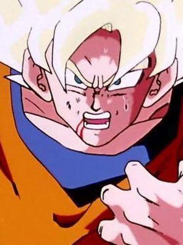 Dragon Ball Z : Double Trouble for Goku