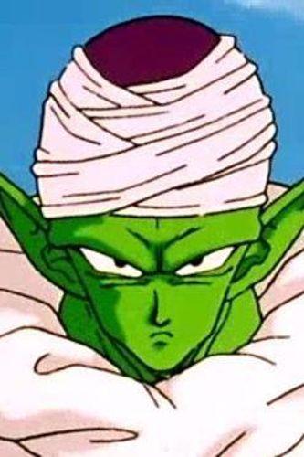 Dragon Ball Z : Piccolo's Folly