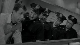 Car 54, Where Are You?: Je T'adore, Muldoon