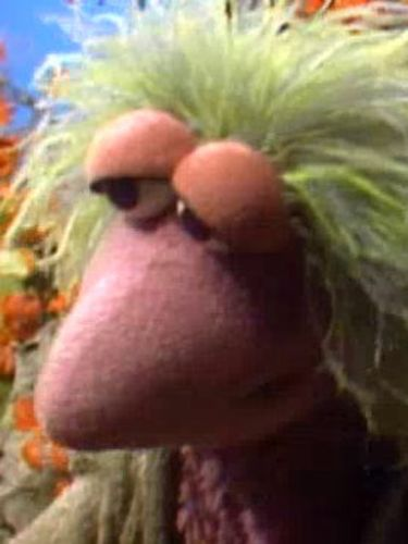 Fraggle Rock : Invasion of the Toe Ticklers