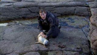 Man vs. Wild: Cape Wrath, Scotland