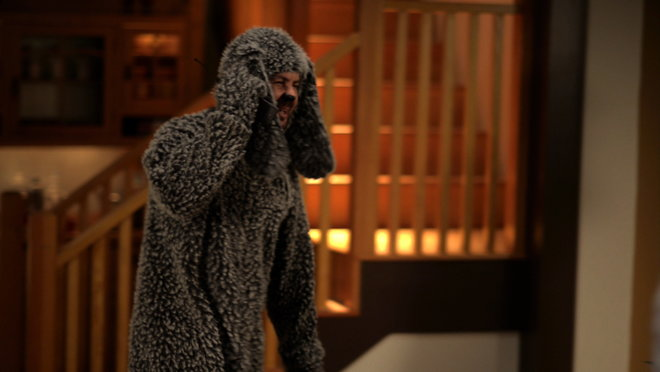 Wilfred: Guilt