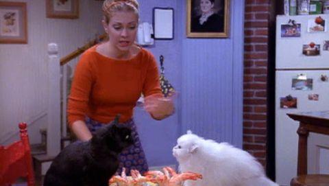 Sabrina, the Teenage Witch : Salem and Juliette