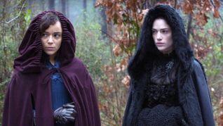 Salem: Survivors