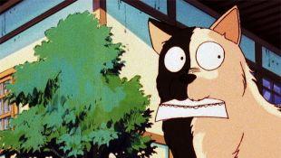 Ranma 1/2: A Ninja's Dog Is Black and White