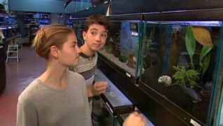 Popular Mechanics for Kids: Aquariums