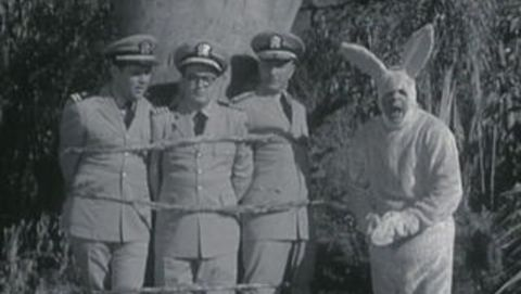 McHale's Navy : Chuckie Cottontail