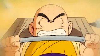 DragonBall: Goku Vs. Krillin