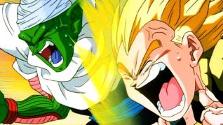 DragonBall Z: Feeding Frenzy