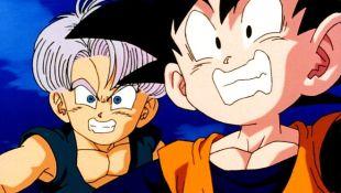 Dragon Ball Z : The Warrior's Decision