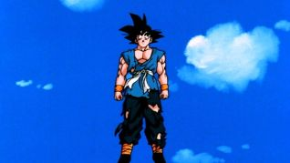 DragonBall Z: Goku's Next Journey