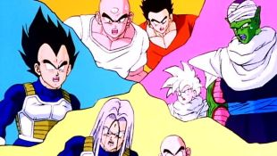 Dragon Ball Z : The Fight Is Over