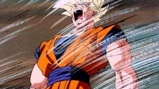 DragonBall Z: Goku vs. Pikkon