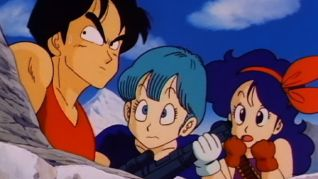 DragonBall: Lost and Found