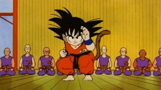 DragonBall: The Time Room