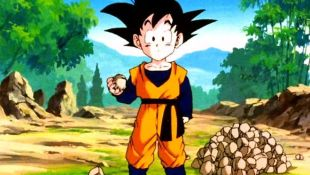 Dragon Ball Z : The Newest Super Saiyan