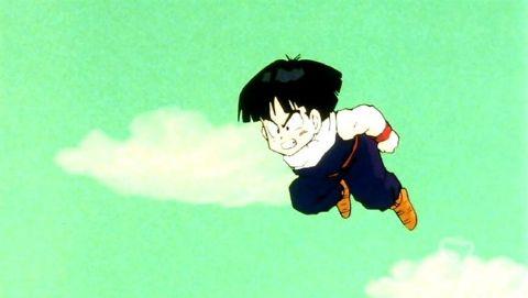 Dragon Ball Z : Enter Goku