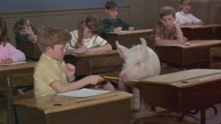 Green Acres: The Confrontation