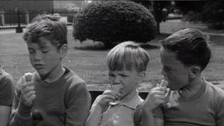 Dennis the Menace: Wilson's Second Childhood