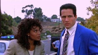 Silk Stalkings: Killer Cop