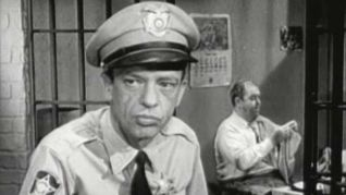 The Andy Griffith Show: Dogs, Dogs, Dogs