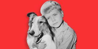 Lassie [TV Series]