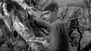 Lost in Space: Attack of the Monster Plants