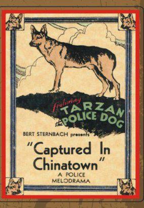Captured in Chinatown