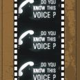Do You Know This Voice?