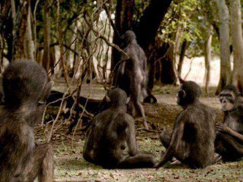 Walking with Prehistoric Beasts, Episode 4