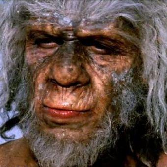Walking With Cavemen : Savage Family