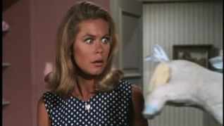 Bewitched: Nobody's Perfect