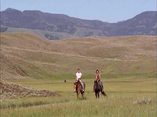 Laura McKenzie's Traveler: Way Out West
