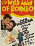 The Wild Man of Borneo