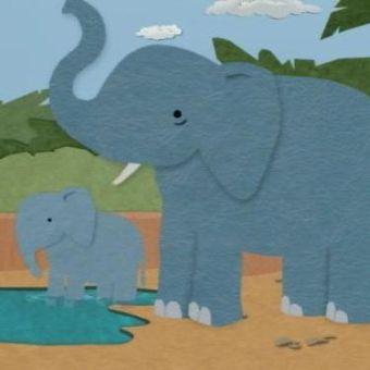 Little Bill : The Zoo; My Pet Elephant