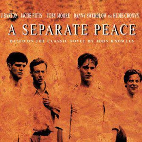 A Separate Peace-John Knowles Essay