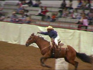 Postcards From Buster: Rodeo Cowgirl (Houston, Texas)