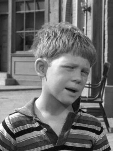 The Andy Griffith Show Opie And The Bully 1961 Bob Sweeney