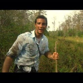 Man vs. Wild : Everglades