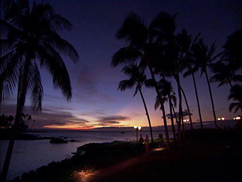 Laura McKenzie's Traveler: Hawaii - The Big Island