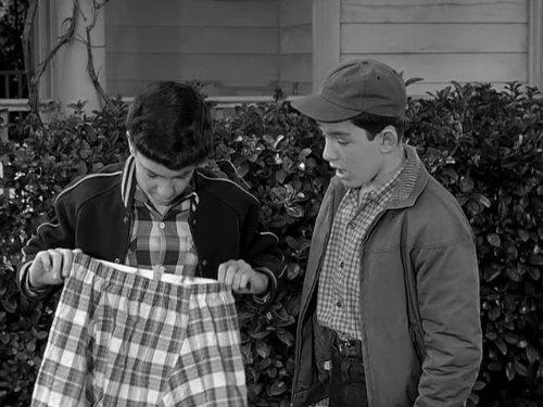 Leave It to Beaver: Beaver's Laundry