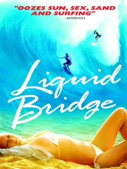 Liquid Bridge
