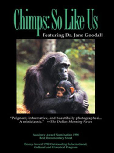 Chimps: So Like Us
