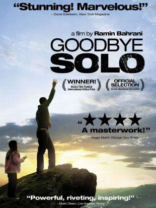 Goodbye Solo