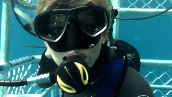 Open water 3 cage dive 2017 gerald rascionato cast and crew allmovie - Open water 3 cage dive ...