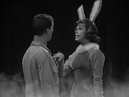 The Dick Van Dyke Show : Washington vs. the Bunny