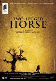 Two-Legged Horse